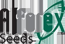 Alforex logo seed company